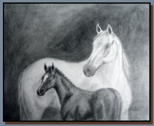 Graphite drawing of a white mare and a dark foal.