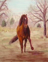 Acrylic painting of a Peruvian Horse