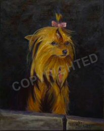 """Abigail"", a Genesis oil painting of a Yorkshire Terrier"