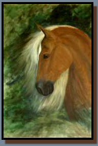 """Apollo's Profile&quot, an acrylic painting of a Peruvian Paso horse"