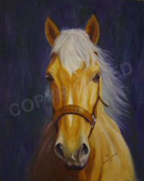 Oil painting of Mandy simiular to an earlier painting of the same mare.