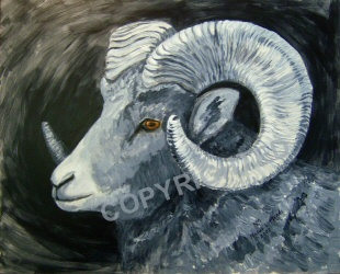 Bighorn sheep painted in black and white with eye color for contrast.