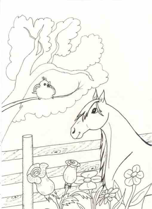 Page 19 from Coloring Book of Horses
