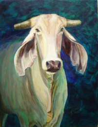 Acrylic painting of a Brahama cow named Dumplin'